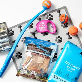 New Puppy Essentials